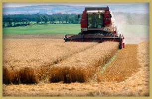 essential machine family farm